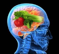 brainfood-01-resized-600.jpg