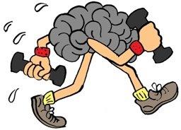 training-brain